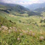 Hahnenmoos Blick ins Tal