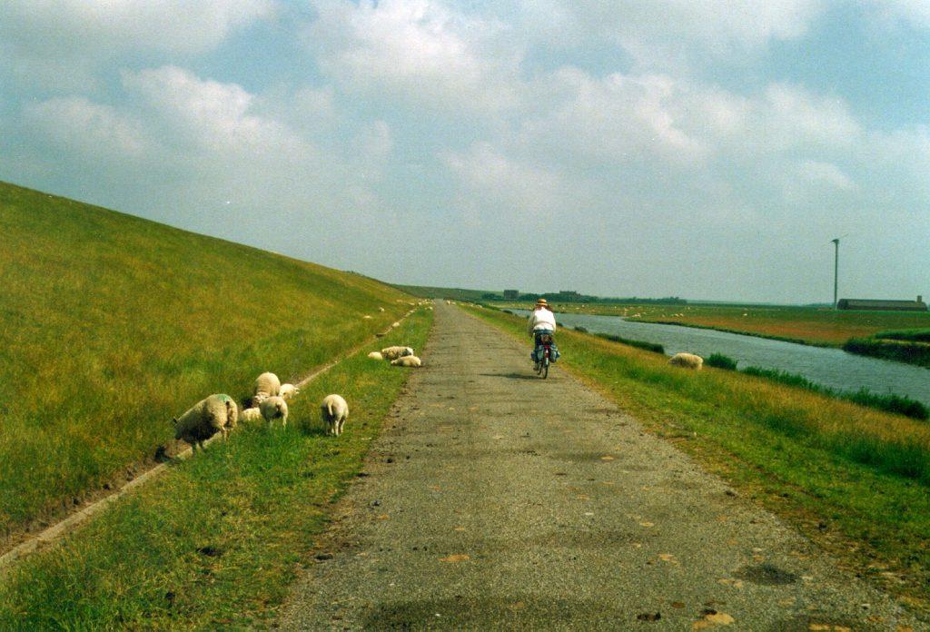 An der Nordsee entlang radeln, von Rotterdam nach Hamburg