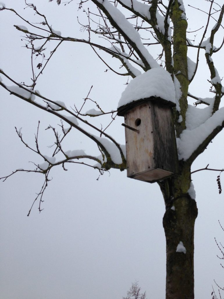 Das Vogelhäuschen hat eine dicke weiße Schneemütze auf.