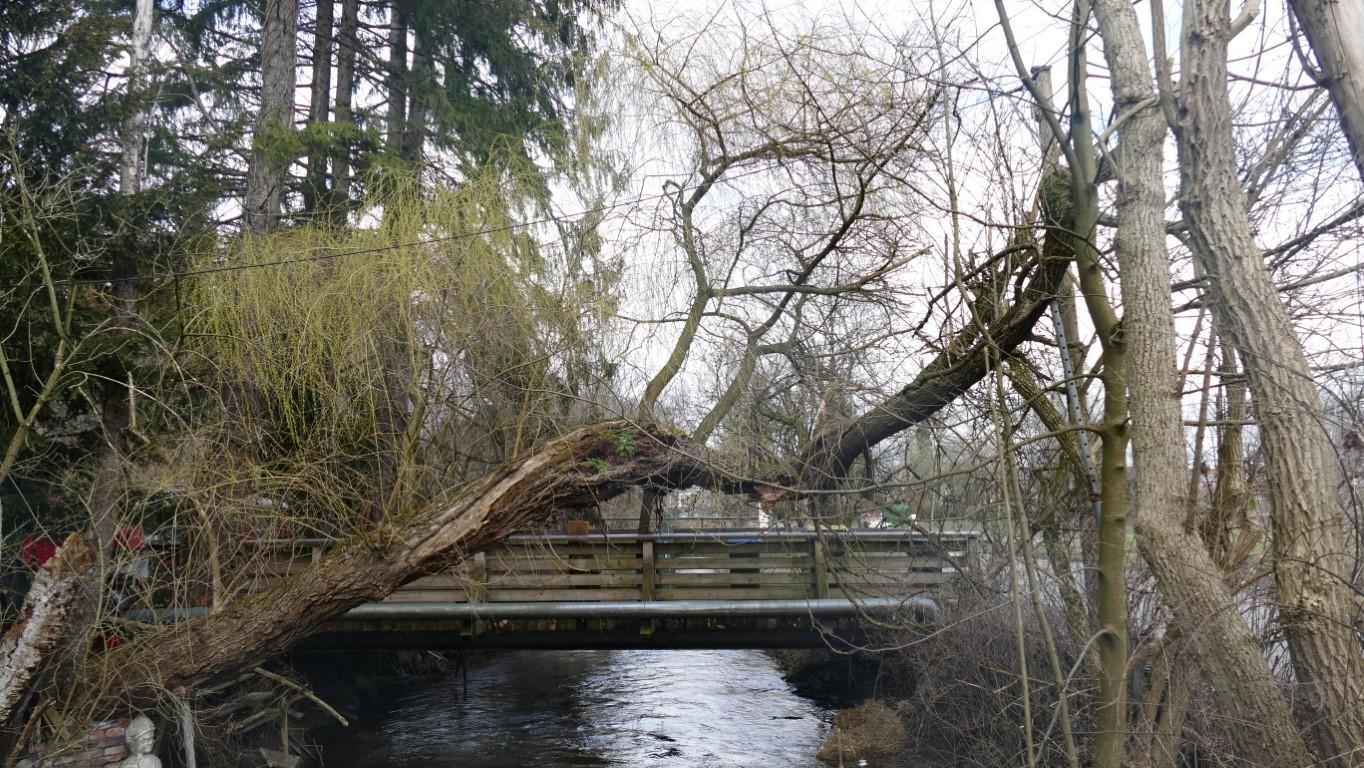 Brücke über Gröbenbach