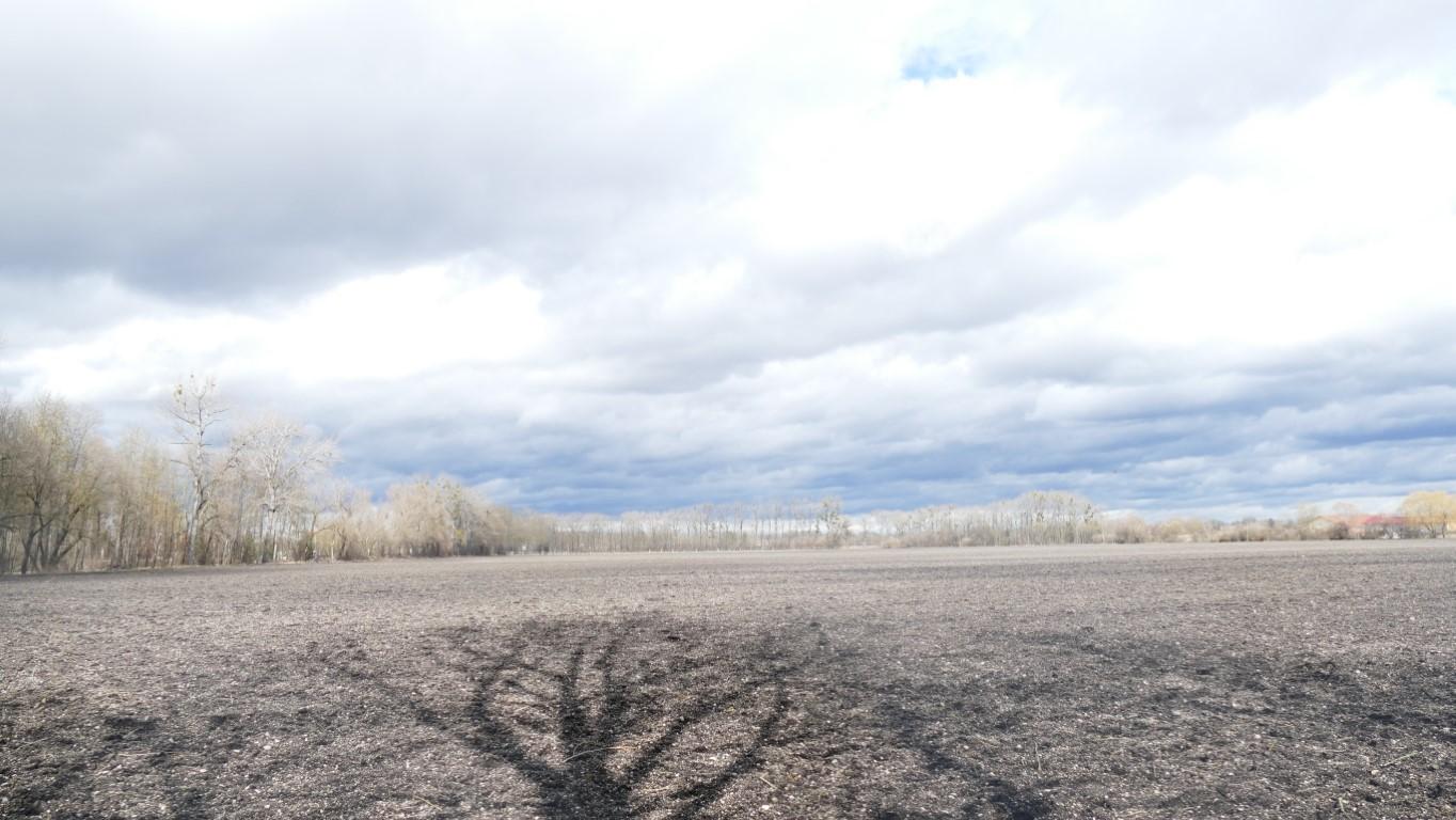 Felder nördlich von Karsfeld