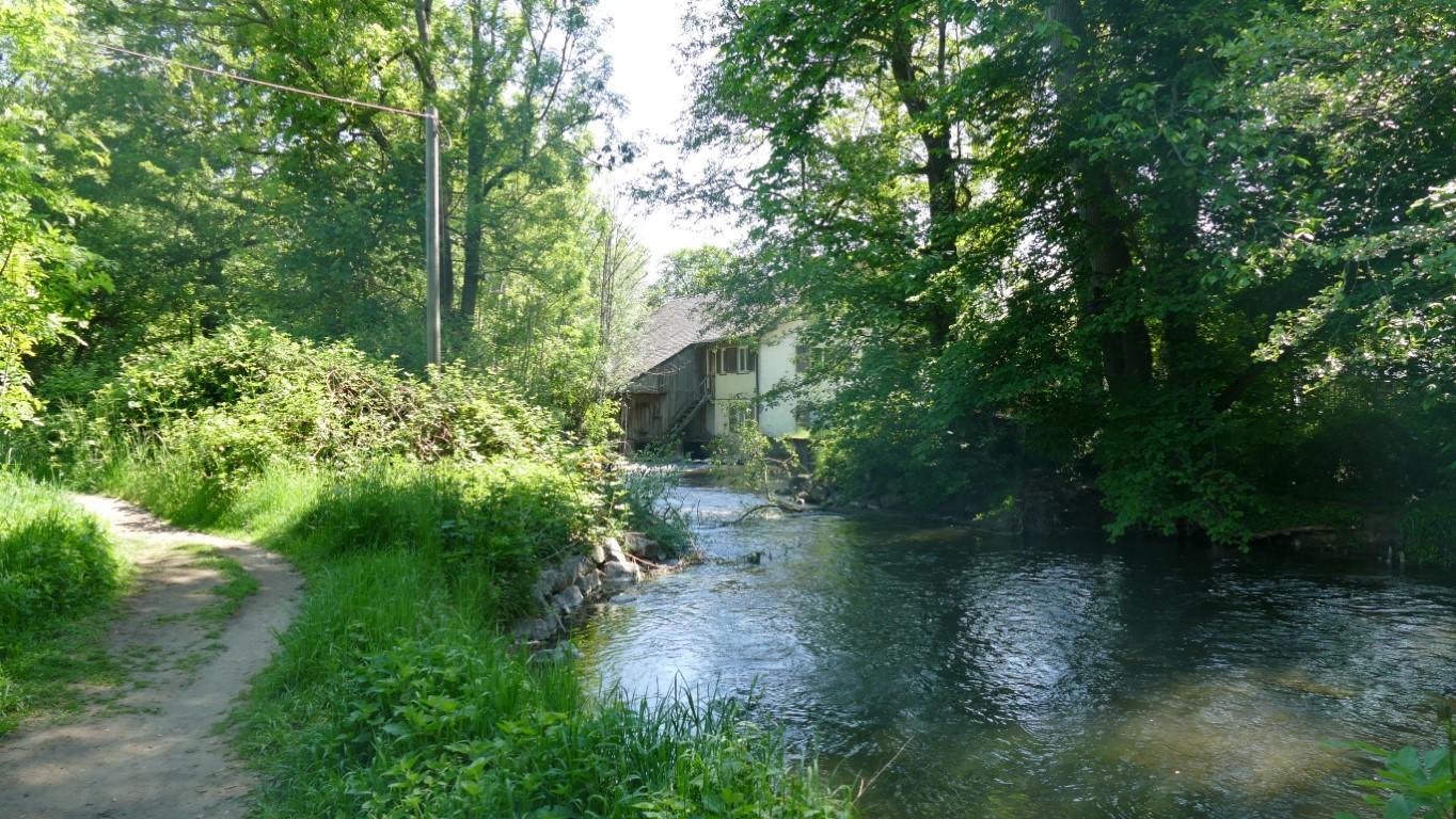 Mühle an der Würm